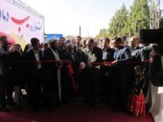 جشنواره سیب شهرستان دماوند